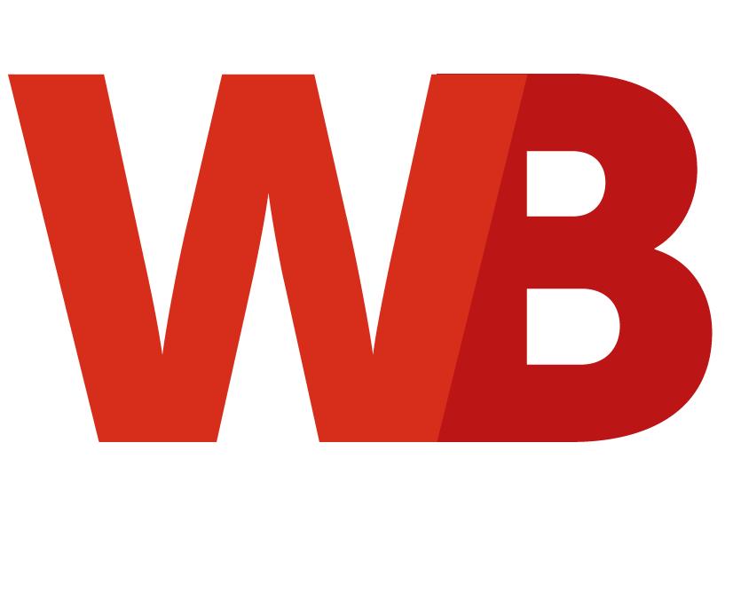 Website-bouwers-logo-nieuw